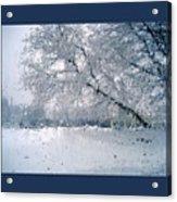 Frosty Daze Acrylic Print