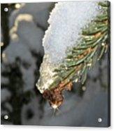 Frosty Drip Acrylic Print