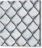 Frosty Fence Acrylic Print