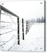 Frosty Fenceline Acrylic Print