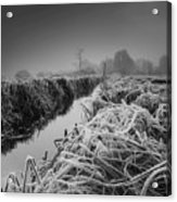 Frosty Field Acrylic Print