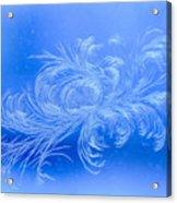 Frosty Flower Acrylic Print