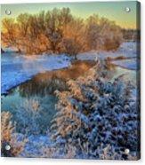 Frosty Morning Acrylic Print