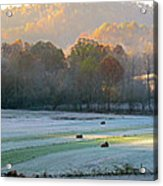 Frosty Morning On The Farm Acrylic Print