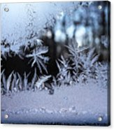 Frosty Morning Window Acrylic Print