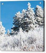 Frosty Mountainside Acrylic Print