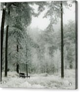 Frosty Paradise Acrylic Print