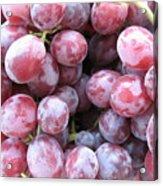 Frosty Purple Grapes Acrylic Print