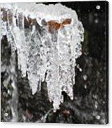 Frozen Branch Acrylic Print