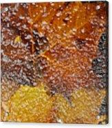Frozen Colors  Acrylic Print