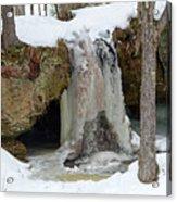 Frozen Fall Acrylic Print