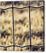 Frozen Fence Acrylic Print