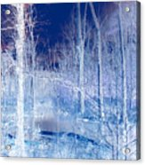 Frozen Forest Acrylic Print