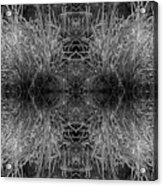Frozen Grass Abstract In Bw Acrylic Print