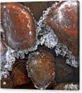 Frozen Jewels Acrylic Print