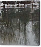 Frozen Lake Reflection Acrylic Print