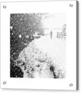 Frozen Moments - Walking Away Acrylic Print