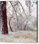 Frozen Morning In Palouse Acrylic Print