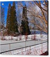 Frozen Pond / Chicago Botanic Garden Acrylic Print