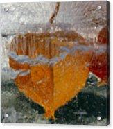 Frozen Pop Cherry Acrylic Print