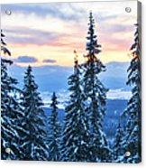 Frozen Reflection 2 Acrylic Print