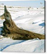 Frozen Shores Acrylic Print