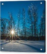 Frozen Trees Under A Winter Sunset Acrylic Print