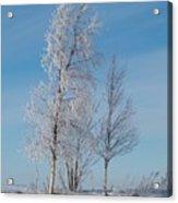 Frozen Views 1 Acrylic Print