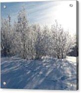 Frozen Views 3 Acrylic Print