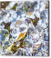 Frozen Water Droplets Acrylic Print