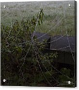 Frozen Web With Light To Dark Background Acrylic Print