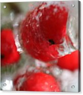Frozen Winter Berries Acrylic Print