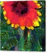 Fruit Salad Flower Acrylic Print