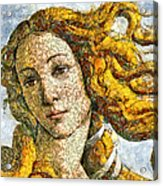 Fruity Venus I Am So Sorry Mr Boticelli Acrylic Print