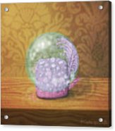 Ftf In A Bubble Acrylic Print