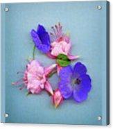 Fuchsia And Cranesbill Acrylic Print