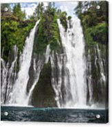 Full Frontal View Acrylic Print