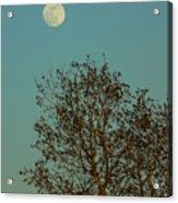 Full Moon At Sunset Acrylic Print