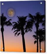 Full Moon Palm Tree Sunset Acrylic Print
