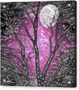 Full Moon Watching Acrylic Print