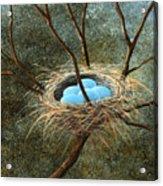 Full Nest Acrylic Print