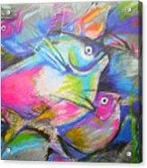 Fun Fish Acrylic Print