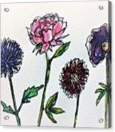 Four Flowers  Acrylic Print
