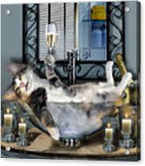 Funny Pet Print With A Tipsy Kitty  Acrylic Print