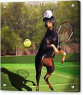 funny pet scene tennis playing Doberman Acrylic Print