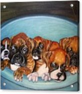 Funny Puppies Orginal Oil Painting Acrylic Print