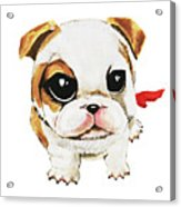 Funny Puppy Hand Painted Watercolor  Acrylic Print