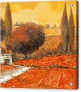 fuoco di Toscana Acrylic Print