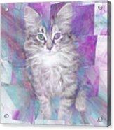 Fur Ball - Square Version Acrylic Print