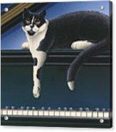 Fur Neil - Cat On Piano Acrylic Print